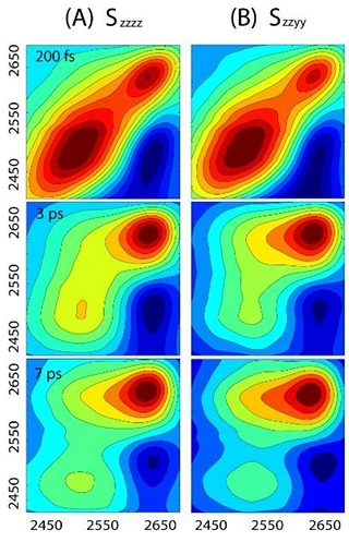 Intensiteten i Polarisationsberoende 2DIR  vibrationsekospektrum