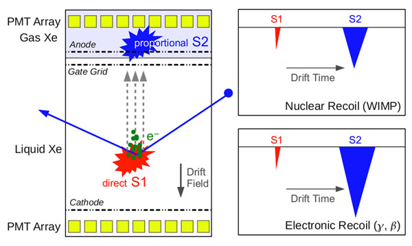 Principle of operation of a dual-phase Xenon TPC. The relative sizes of prompt and delayed signal can help to distinguish (electromagnetic) background from the nuclear recoils we are interested in.